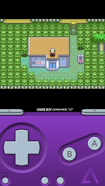 How to Use Pokemon Fire Red Cheats